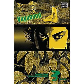Vagabond, Volume 3 (edição de Vizbig Vagabond)