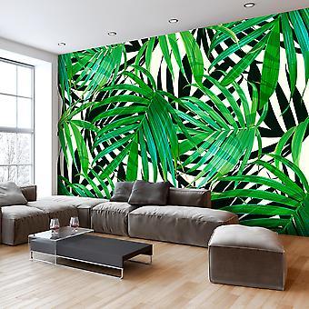 Fototapete - Tropical Leaves