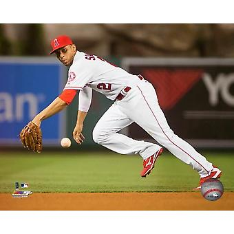 Andrelton Simmons 2016 Action Photo Print
