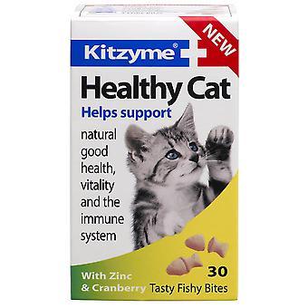 Kitzyme Cat Healthy Cranberry & Zinc 30 Tablets