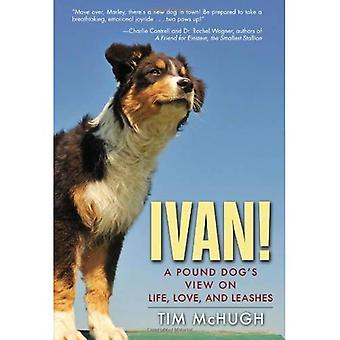 Ivan!: A Pound Dog's View on Life, Love, and Leashes