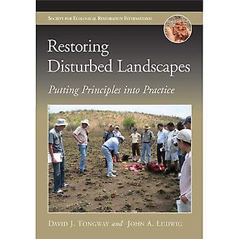 Återställa störd landskap: Att omsätta principerna i praktiken