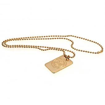 Celtic Gold Plated Dog Tag & Chain