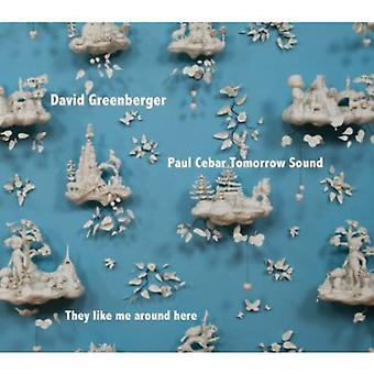 David Greenberger & Paul Cebar i morgen lyd - de ligesom mig omkring her [CD] USA import