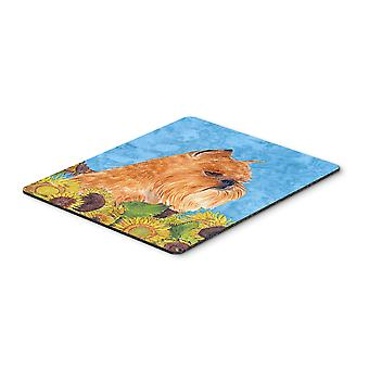 Carolines Treasures  SS4127MP Brussels Griffon Mouse Pad, Hot Pad or Trivet