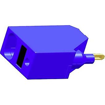 Terminal doubler Blue 1 pc(s) Finder 093.62