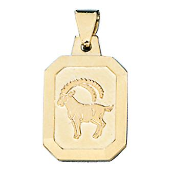 Trailer zodiac sign Capricorn 333 frosted gold yellow gold Zodiac pendants