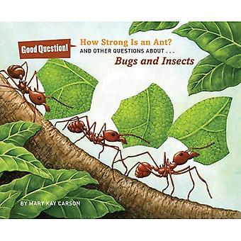 How Strong Is an Ant? (Good Question!)