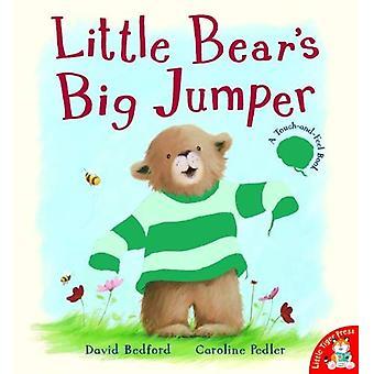 Little Bear's Big Jumper [Illustrated]