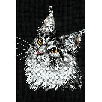 Main Coon Counted Cross Stitch Kit-8.25