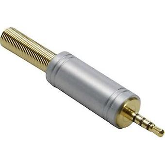 2.5 mm audio jack Plug, straight Number of pins: 4 Stereo Gold BKL Electronic 1103086 1 pc(s)