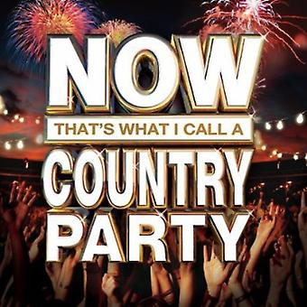 Now That's What I Call a Country Party - Now That's What I Call a Country Party [CD] USA import