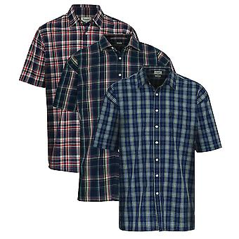 Pack of 3 Mens Champion Country Brighton Style Casual Check Short Sleeved Shirt