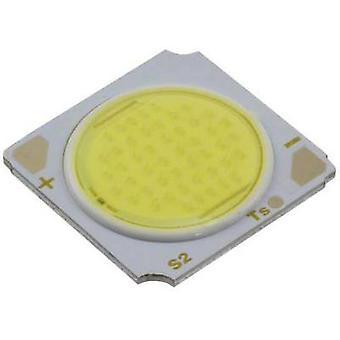 HighPower LED Cold white 37.6 W 2520 lm 120 °