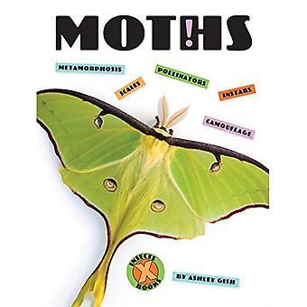 Nachtvlinders (X-boeken: insecten)