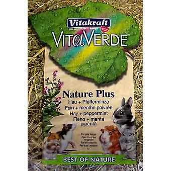 Vita Verde Hay & Peppermint 500g (Pack of 6)