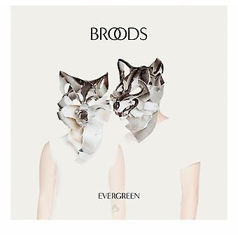 Broods - Evergreen [CD] USA import