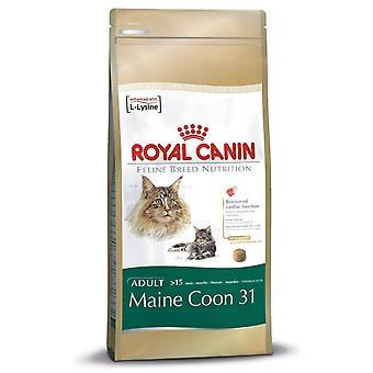 Royal Canin Maine Coon 31 Cat Adult droog kattenvoer evenwichtig en voltooien van voedsel 2kg