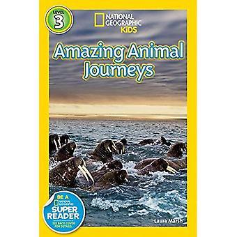 Große Migrationen: Erstaunliche Tiere Reisen (National Geographic Leser Serie)