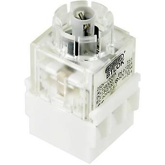 Contact + bulb holder 2 breakers momentary 250 V Schlegel BTLO5K 1 pc(s)