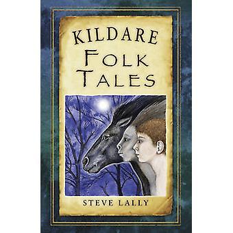 Kildare Folk Tales by Steve Lally - 9781845888107 Book