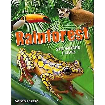 Rainforest See Where I Live!: Age 6-7, Below Average Readers