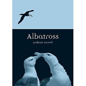 Albatros (Tier)