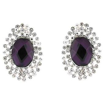 Clip On Earrings Store Purple Stone and Clear Diamante Crystal Oval Clip on Earrings