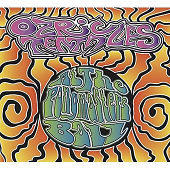 At The Pongmaster's Ball by Ozric Tentacles