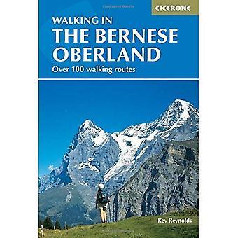 Marcher dans l'Oberland bernois (Cicerone marche Guide) (International)