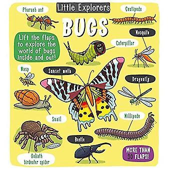 Little Explorers: Bugs (Little Explorers)