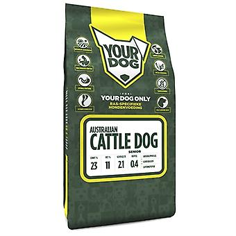YOURDOG AUSTRALIAN CATTLE DOG SENIOR 3 KG