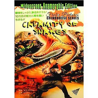 Katastrofe af slanger [DVD] USA importerer