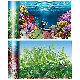 Ica Caribbean Pond Fund (Fish , Decoration , Backgrounds)