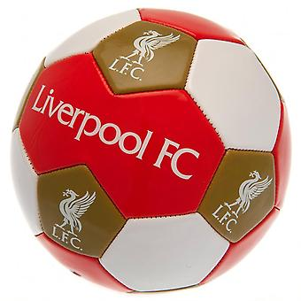 Liverpool FC Size 3 Football