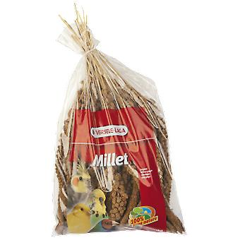 Versele Laga millet cluster (birds, food for birds, other)