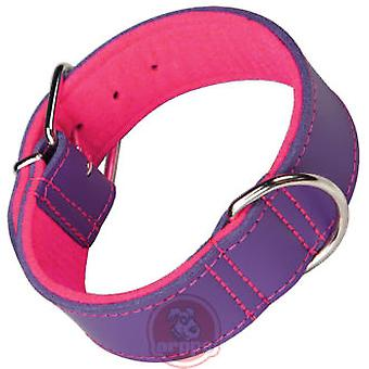 Arppe Beach Leather Collar Purple / Pink (Dogs , Walking Accessories , Collars)