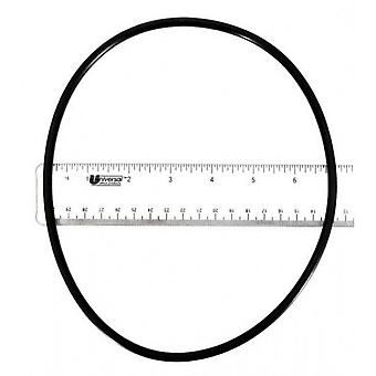 Astral 77A1800050 O-Ring for Motor Clamp