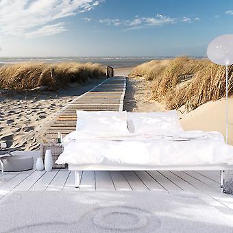 خلفية-شاطئ بحر الشمال، Langeoog