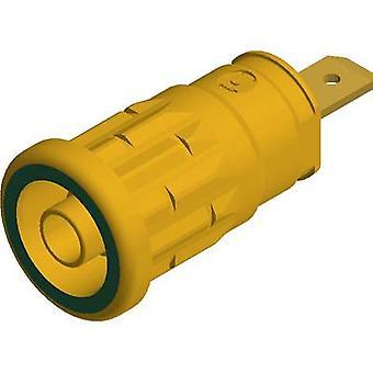 Safety jack socket Socket, vertical vertical Pin diameter: 4 mm Yellow-green