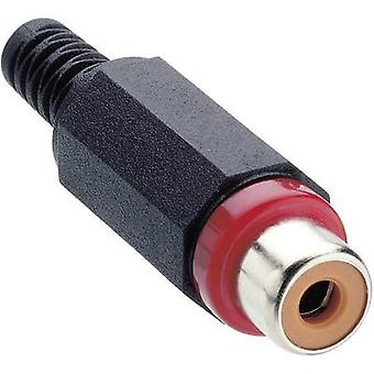Lumberg XKTO 1 RCA connector Socket, straight Number of pins: 2 Red 1 pc(s)