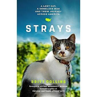 Se desvia - a verdadeira história de um gato perdido - um homem sem-teto e seu Journ