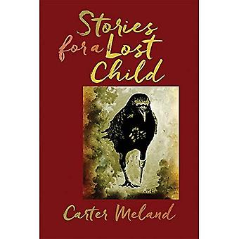 Stories for a Lost Child (American Indian Studies)