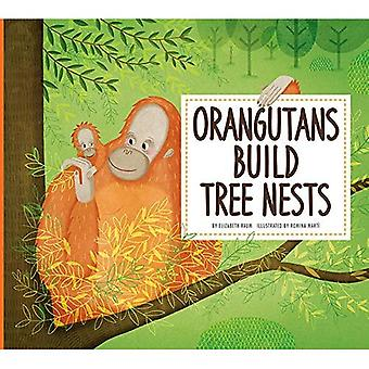 Orangutans Build Tree Nests� (Animal Builders)