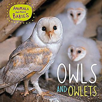 Animals and their Babies: Owls & Owlets (Animals and� their Babies)