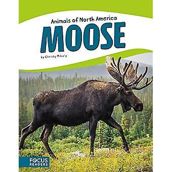 Moose by Christy Mihaly - 9781635170351 Book