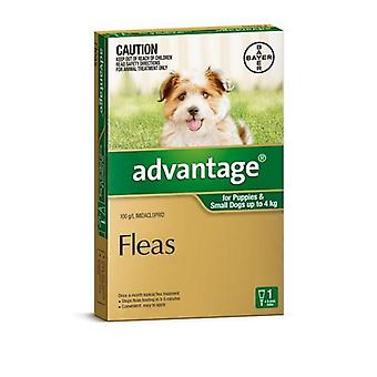 Advantage Green 1 Pack Small Dogs 0-4kg