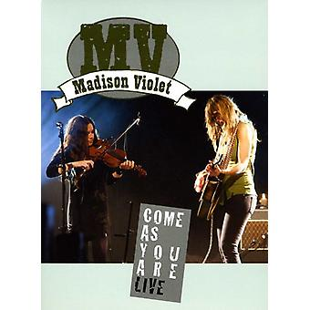 Madison Violet - kom som du er Live DVD [DVD] USA import