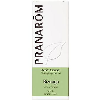Pranarom Biznaga Essential Oil