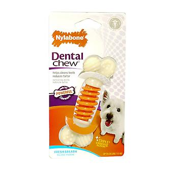 Nylabone Pro Action Dental Bone Small